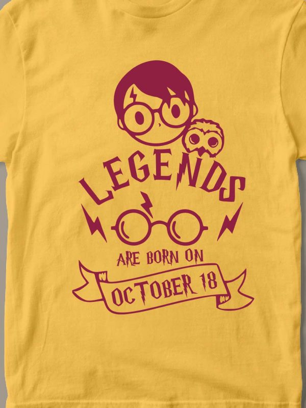 close up of Harry Potter Kid's Birthday T-shirt,